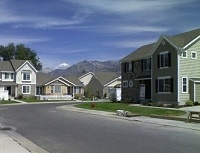 House Mice in American Fork, UT